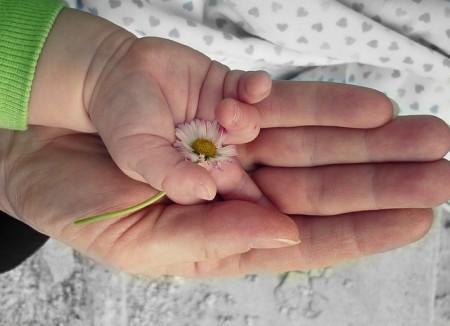 hands-pixabay